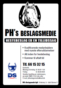 PH Beslagsmedie